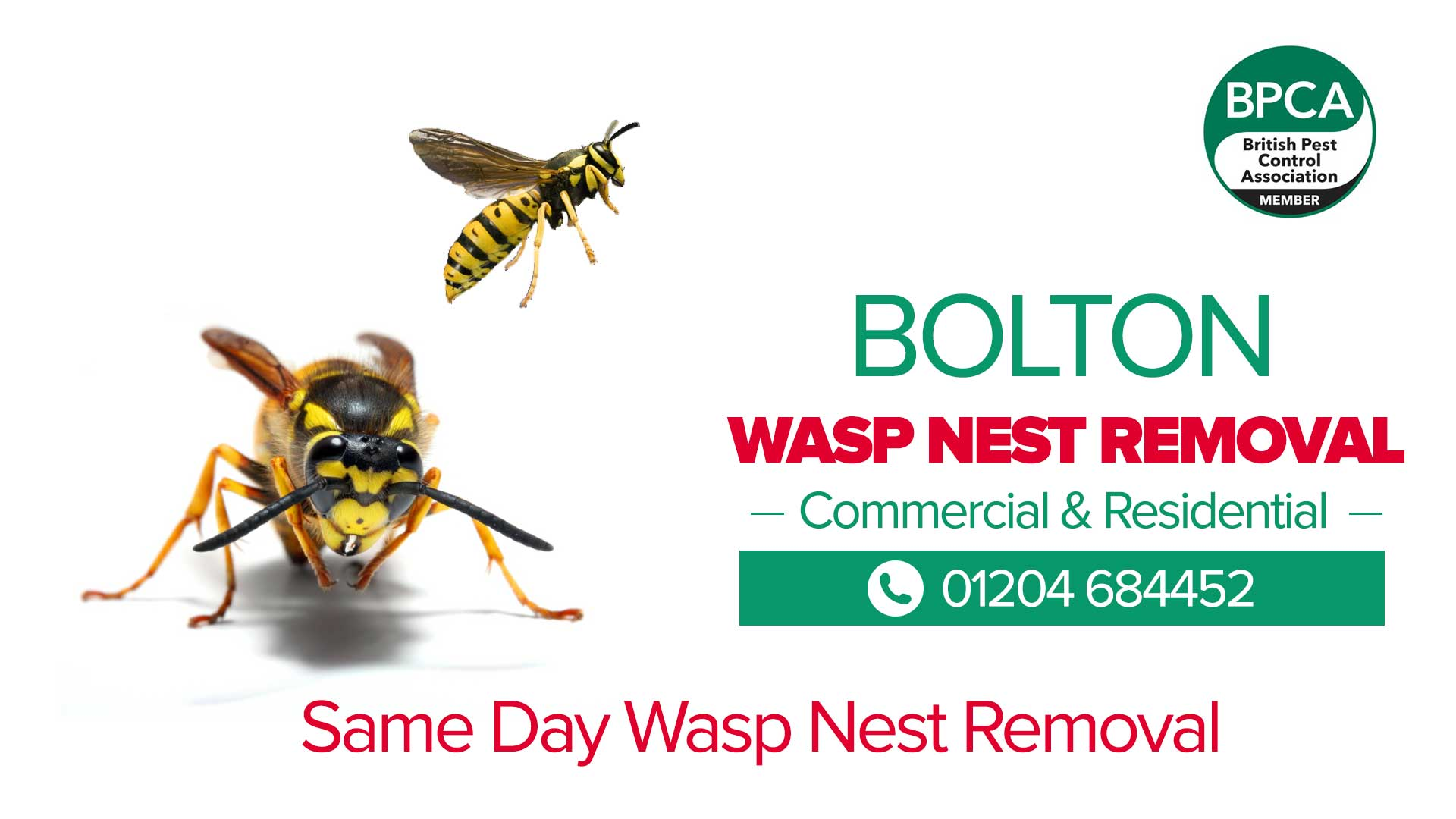 wasp nest removal bolton