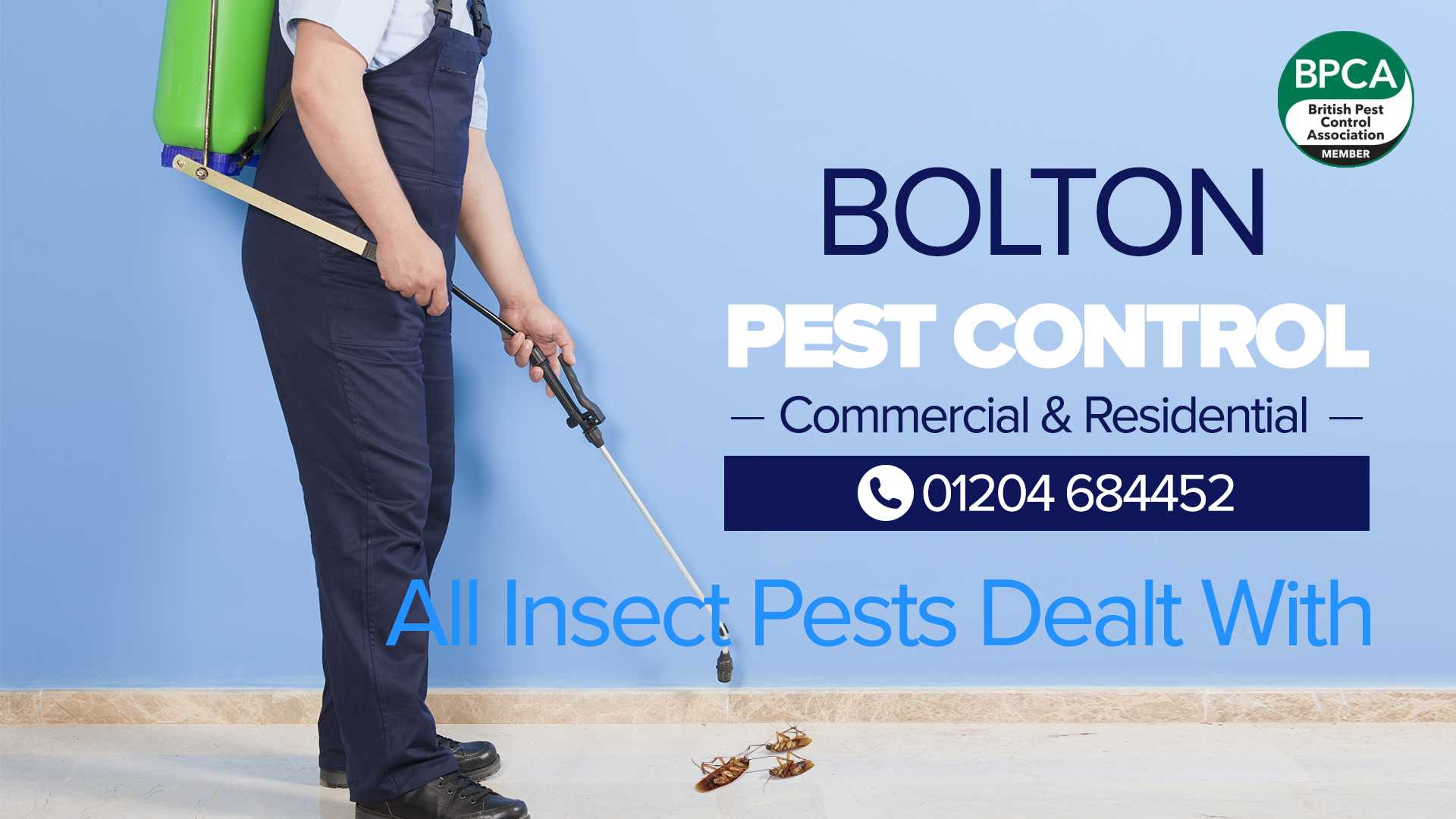 insect pest control bolton